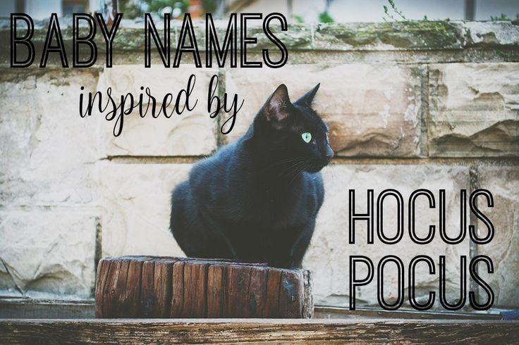 cat names boy black cat names boy cat cat names boy