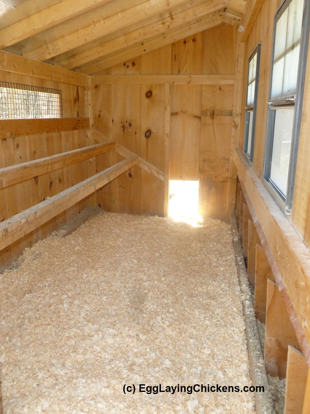 Inside Chicken House Inside Chicken Coops Walkin  Walk Inside For Cleaning And Four