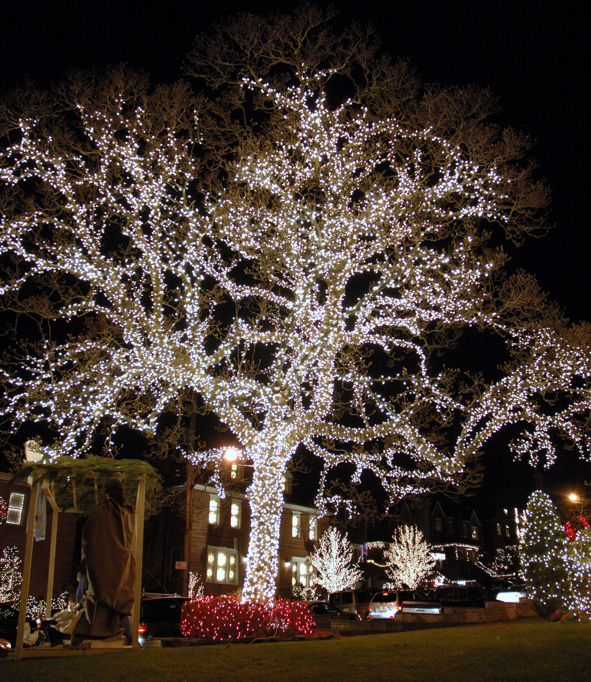 Dyker Heights Lights Up With Xmas Extravaganza