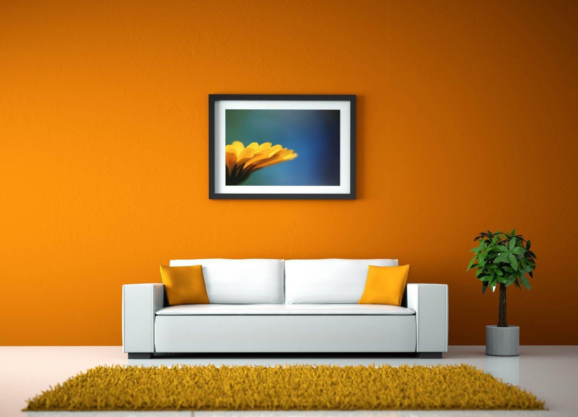 Best Color for Living Room Walls