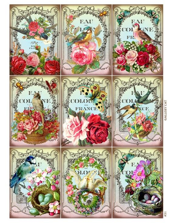 Vintage birds and bees digital collage sheet