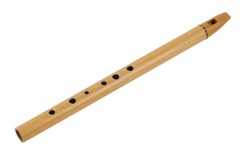 Thomann Irish Flute D Irish flute and Instruments - band instrument repair sample resume