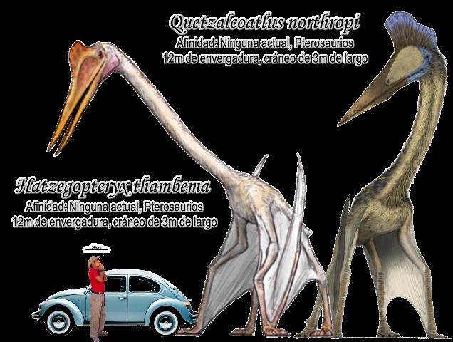 Quetzalcoatlus 29cbe7e5d71ef201236057d7169752ea