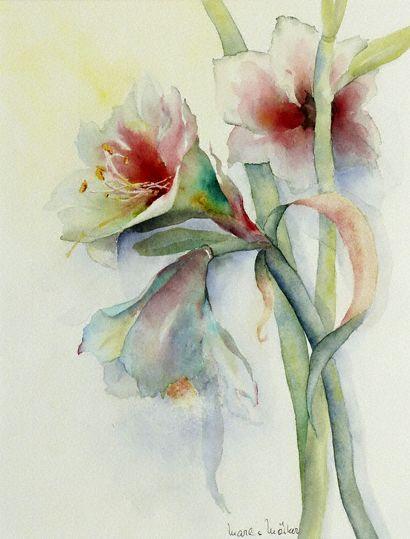 amaryllis 16 143x32 blumen pinterest aquarell aquarelllmalerei und blumen. Black Bedroom Furniture Sets. Home Design Ideas