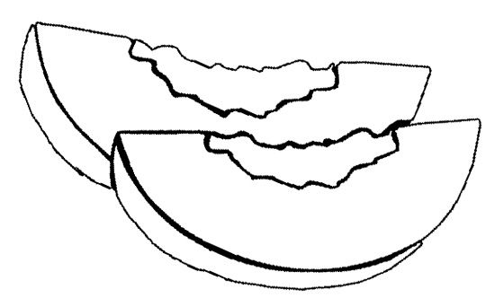 Melon Slice Coloring Page Coloring Pages Color Page
