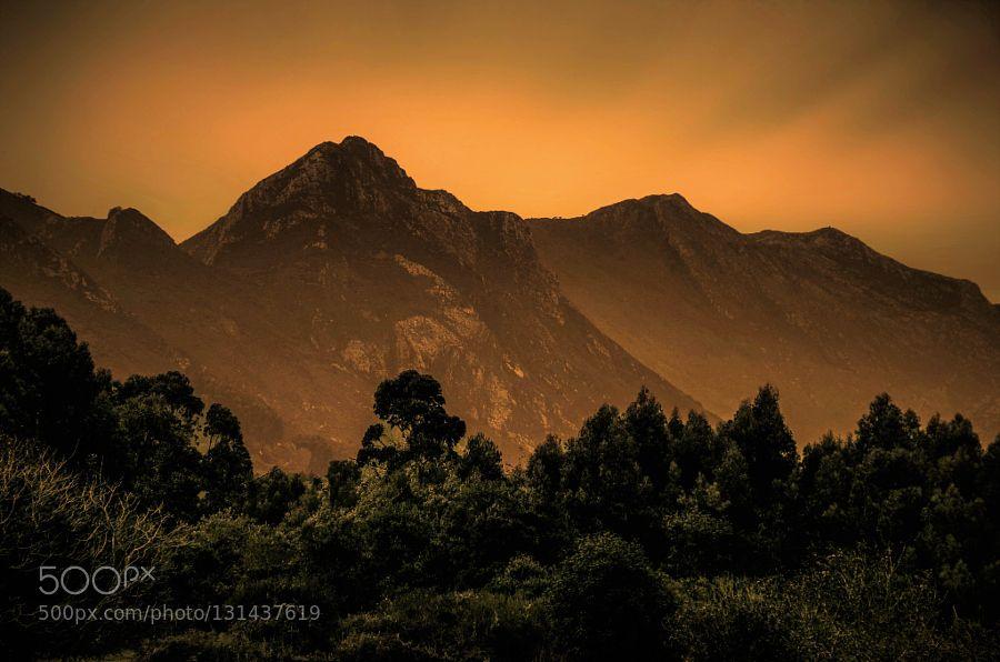 Sunset #Orkidea -