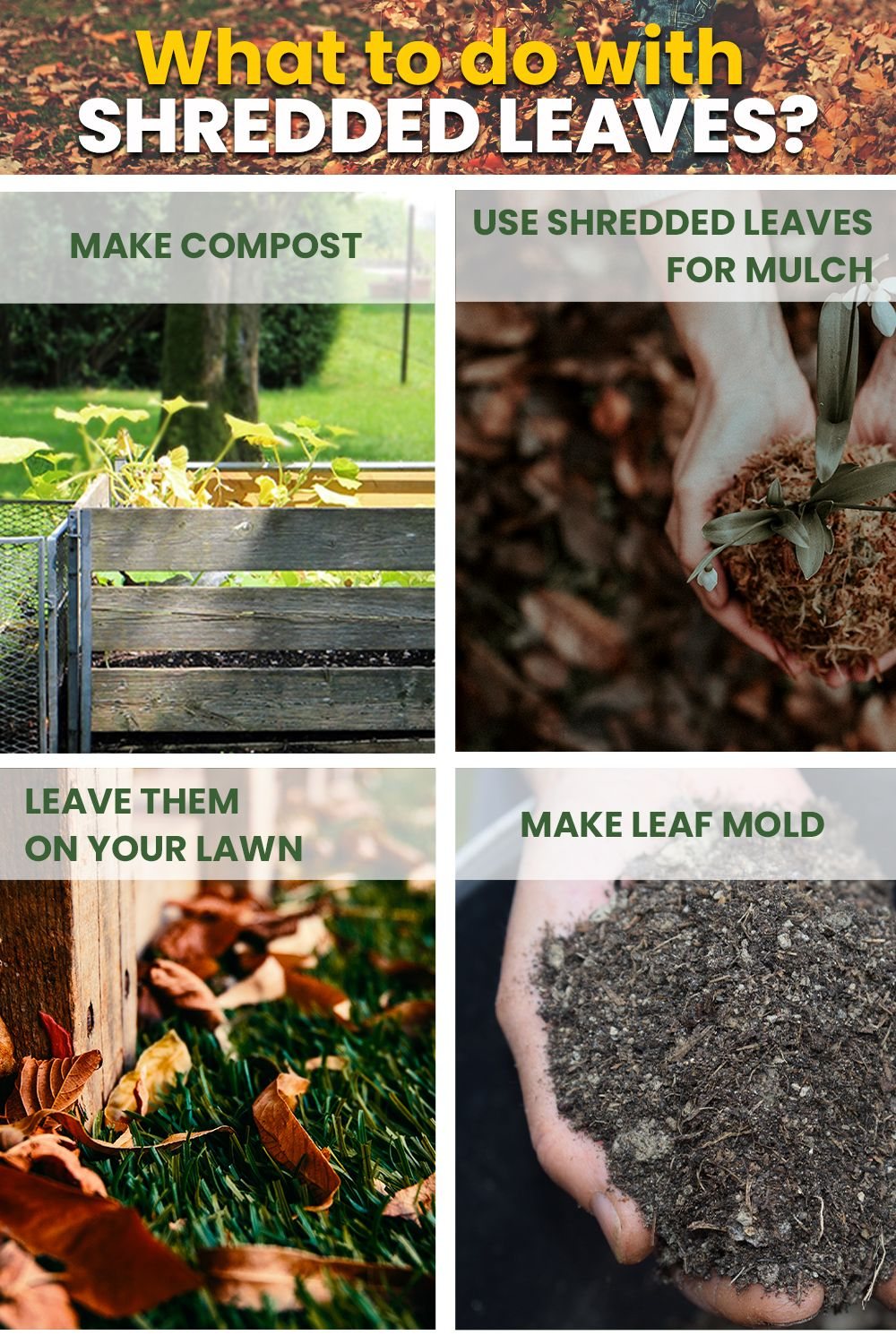 How to shred leaves without a shredder in 2020 gardening