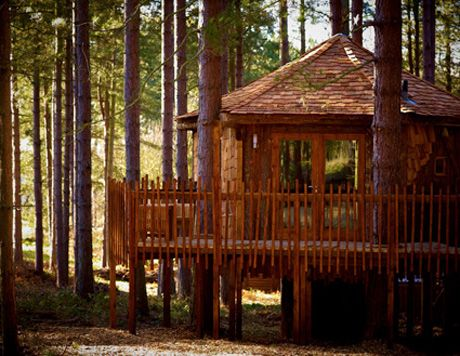 Ordinaire Sherwood Forest Cabins: Self Catering Cabin Holiday Accommodation.  Luxurious Lodges In Prime UK Forest Locations.