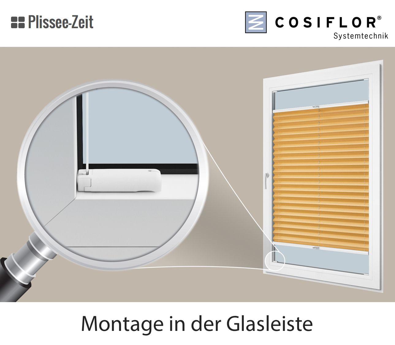 plissee fr schmale glasleiste gallery of montage des plissees in der glasleiste with plissee fr. Black Bedroom Furniture Sets. Home Design Ideas