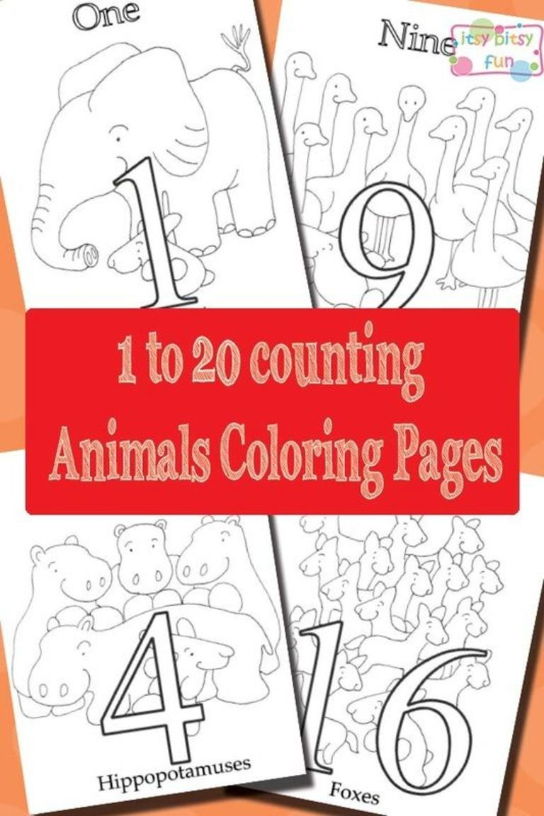 Little Bunny 1 to 20 African Animals Coloring Pages