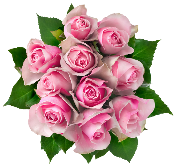Transparent Pink Rose Transparent Pink Roses Bouquet PNG