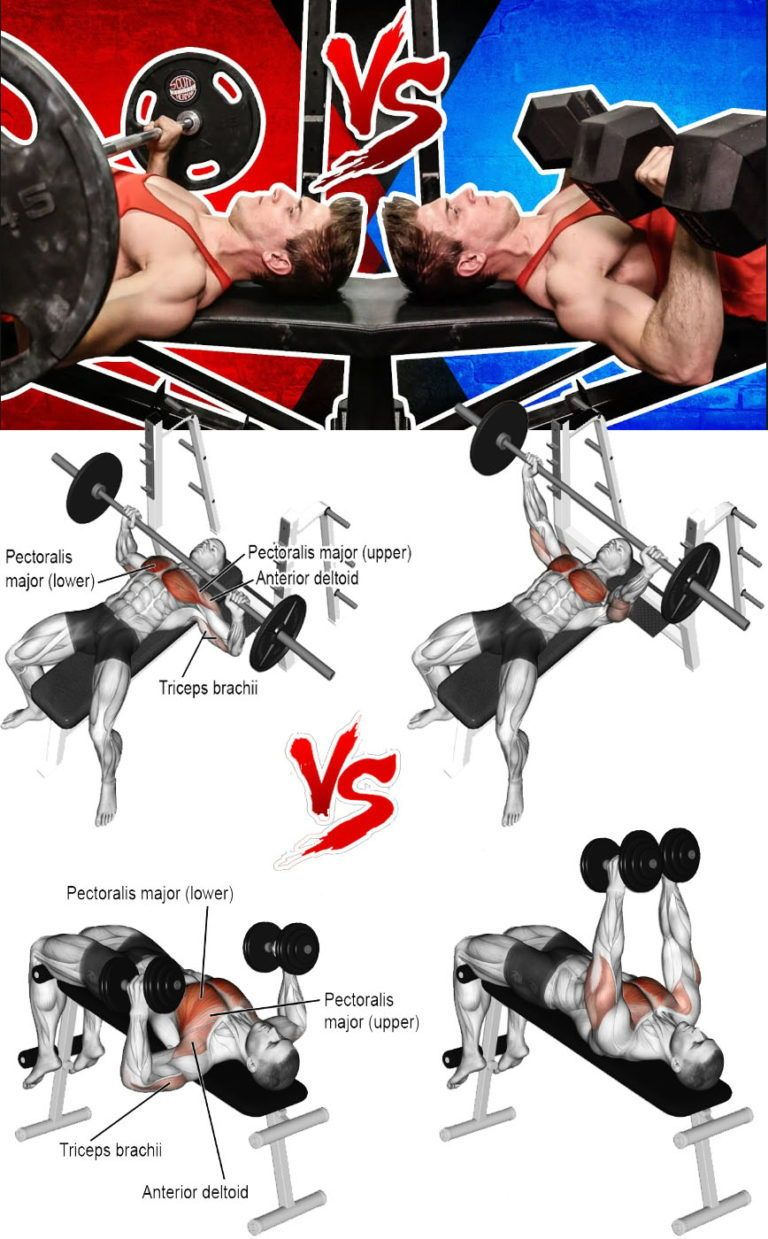 Gain Chest Mass And Boost Your Bench Press Gymguider Com Bench Press Exercise Compound Exercises