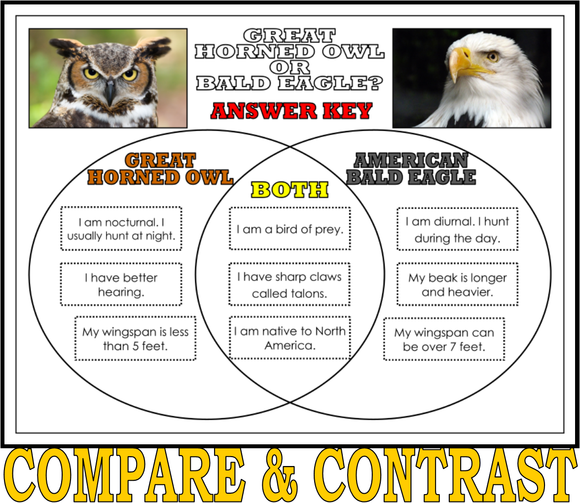Highlight Critical Thinking Skills With This Venn Diagram
