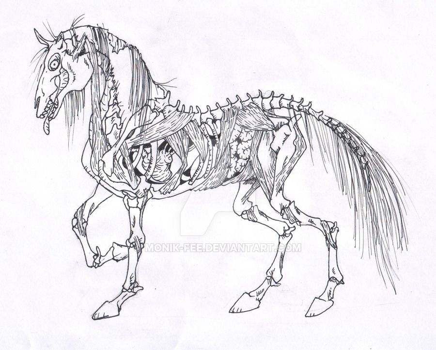 Zombie horse by monik fee undead pinterest horse creepy zombie horse by monik fee ccuart Gallery