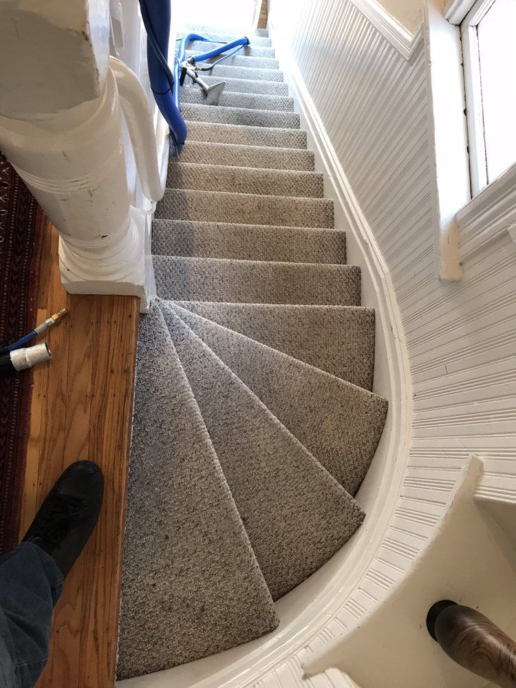 New Life Carpet Cleaning Our Most Common Service Is The Residential In San