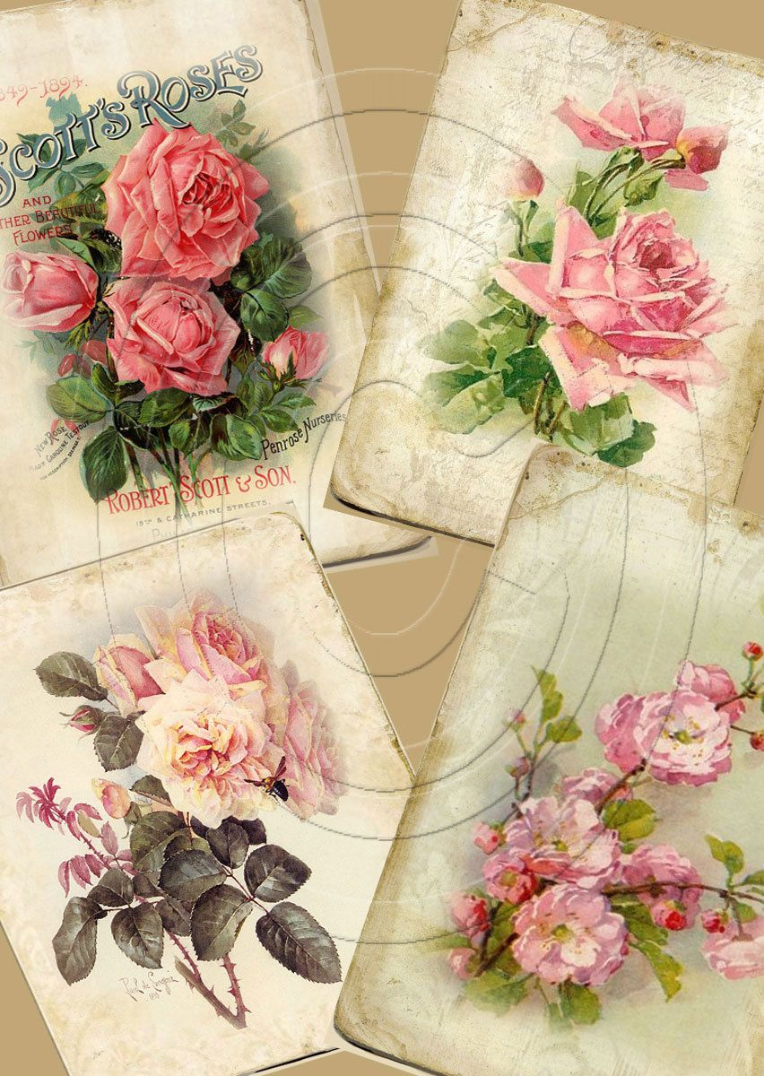 Digital Shabby Chic Collage Sheet Paper Floral Background Decoupage