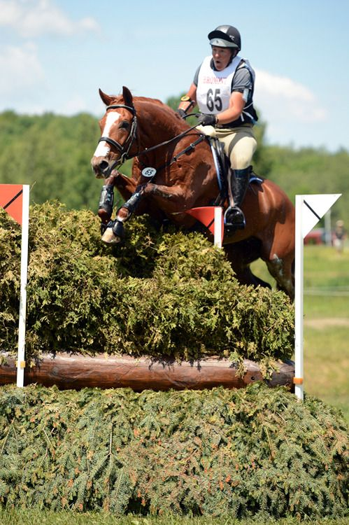 mmm champagne and jumpers!   Show jumping, Equestrian