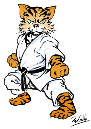 karate tiger dmdhpcoas1 2 pinterest karat arts martiaux et martial. Black Bedroom Furniture Sets. Home Design Ideas