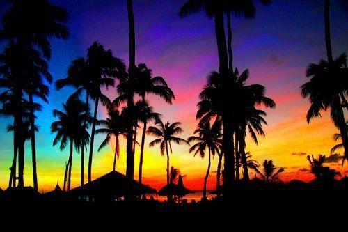 California Sunset Tumblr