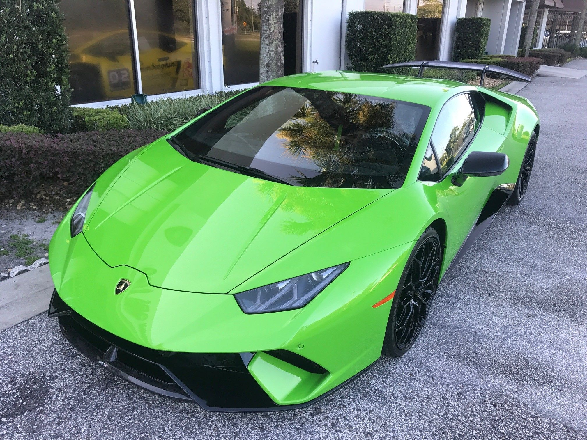 behind car best let your the orlando and of aston atlanta luxury you on images exotic martin lamborghini dreams rentals pinterest rental put wheel tampa
