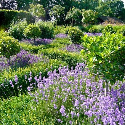 Granja Paisaje por Joanne Alderson Diseño Huerto y jardín - paisajes jardines