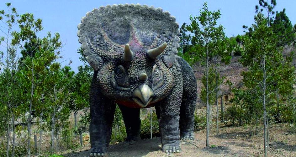 El Valle De Los Dinosaurios Guia Turistico Turistico Dinosaurios Alquileres de vacaciones en villa de leyva. el valle de los dinosaurios guia