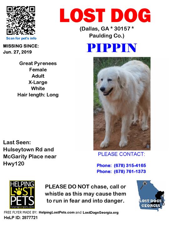 Lostdog Pippin Dallas Hulseytown Rd Mcgarity Place Near