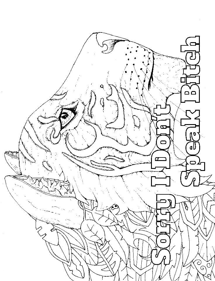 Tiger - Adult Coloring page - swear 14 FREE printable coloring