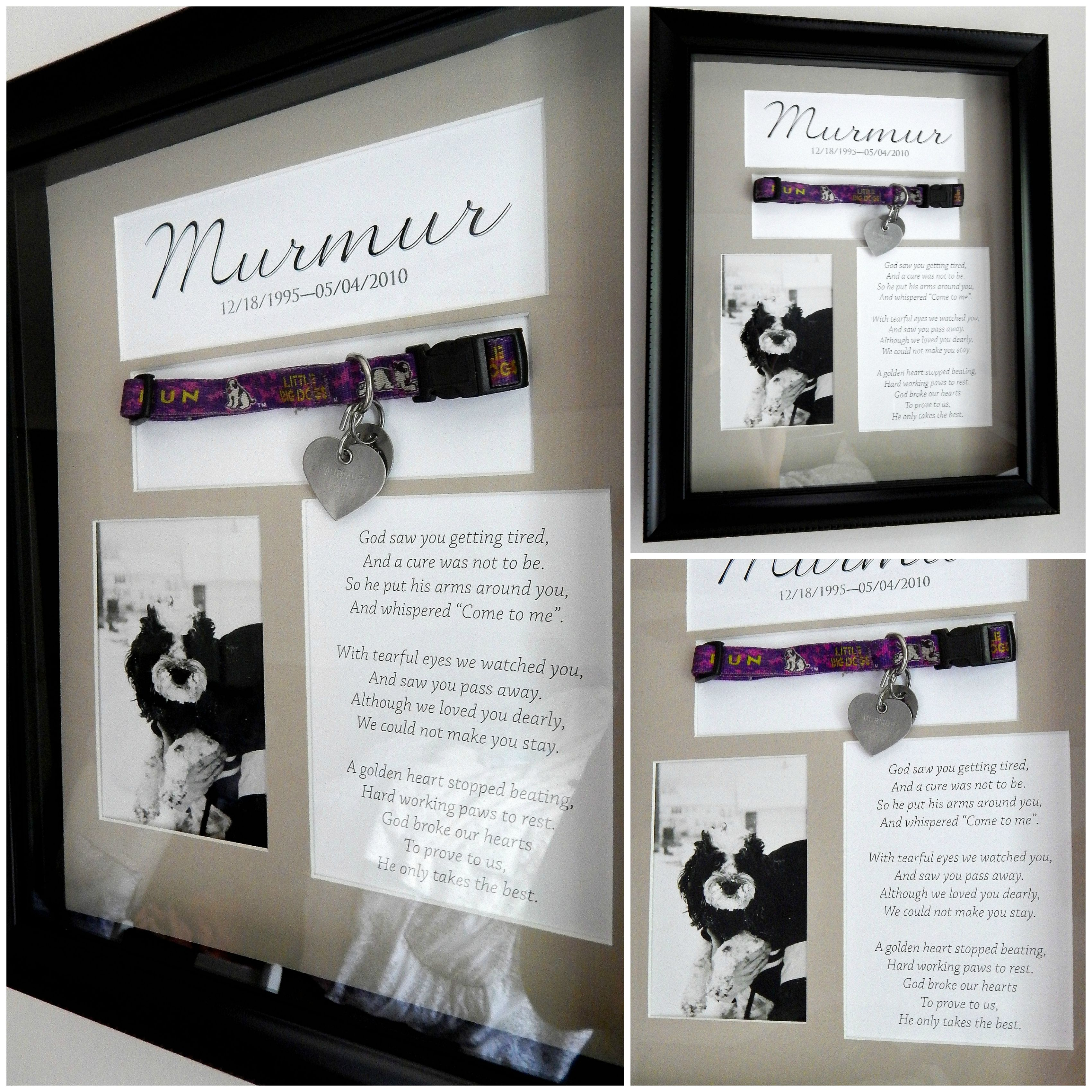 Pin By Joyce Hackenberg On Diy Dog Shadow Box Pet Memorials Personalized Dog Frame