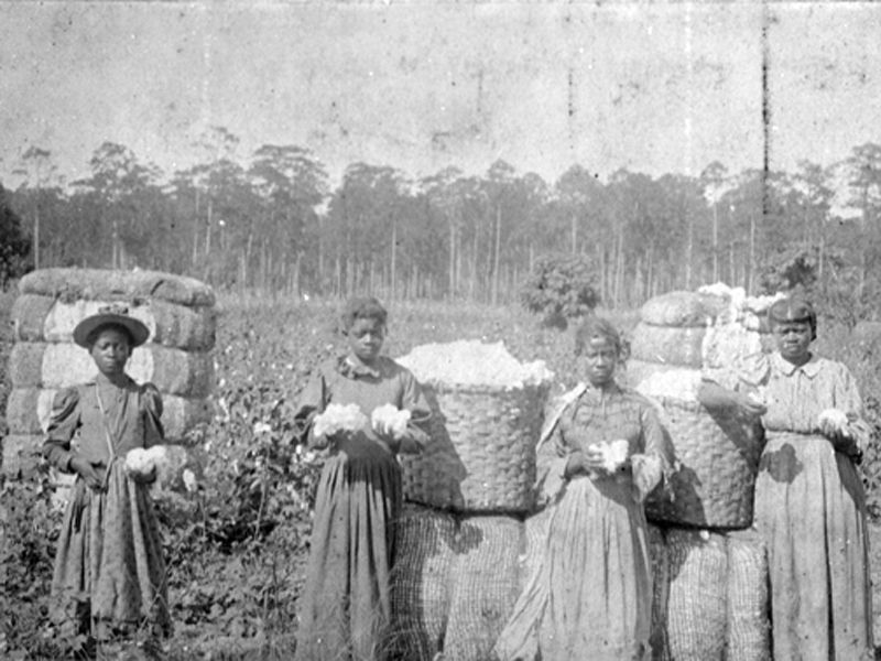 Sharecropping After Civil War