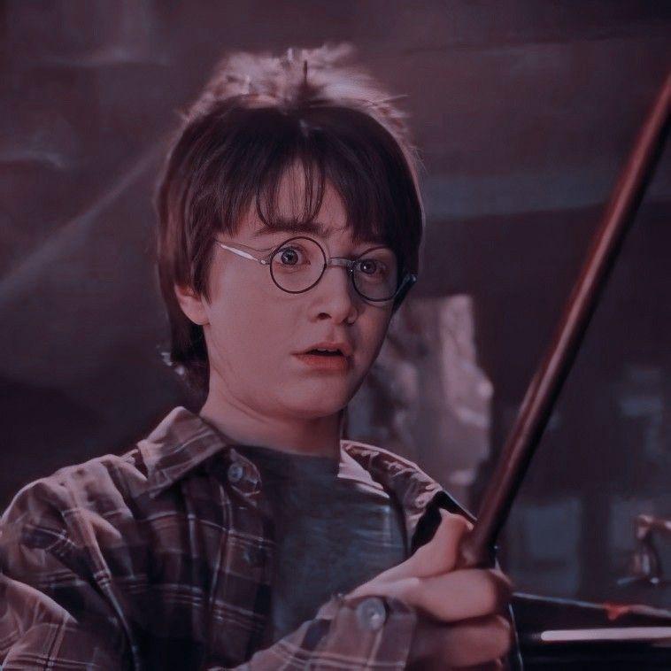 Icon Harry Potter Harry Potter Wallpaper Harry Potter Hermione Granger Harry Potter Icons
