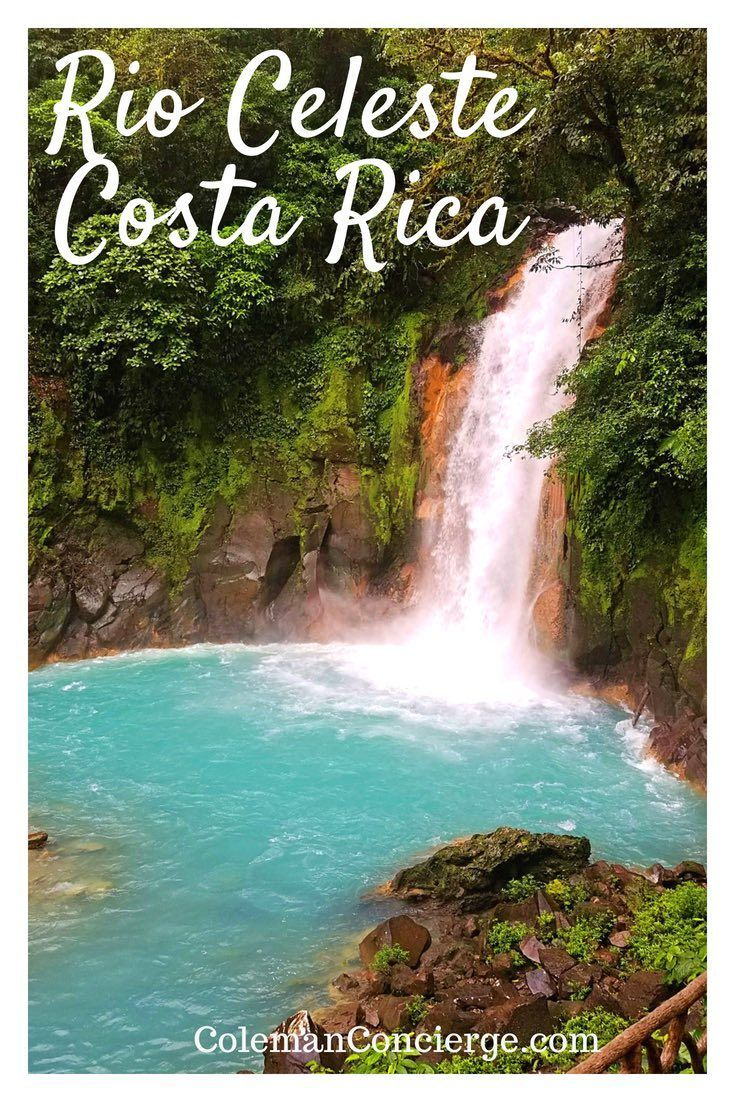 Have you ever wondered what makes Costa Rica's iconic river and waterfall, the Rio Celeste so blue? Click pin to find out more about Costa Rica's most famous natural wonder including 13 tips you must know before visiting including the source of the stunni