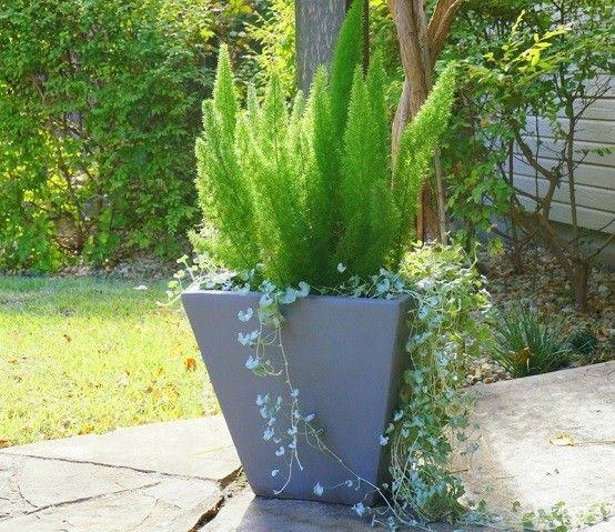 Diseño de jardinesmodernos, arriesgadosúnicos! - jardines modernos
