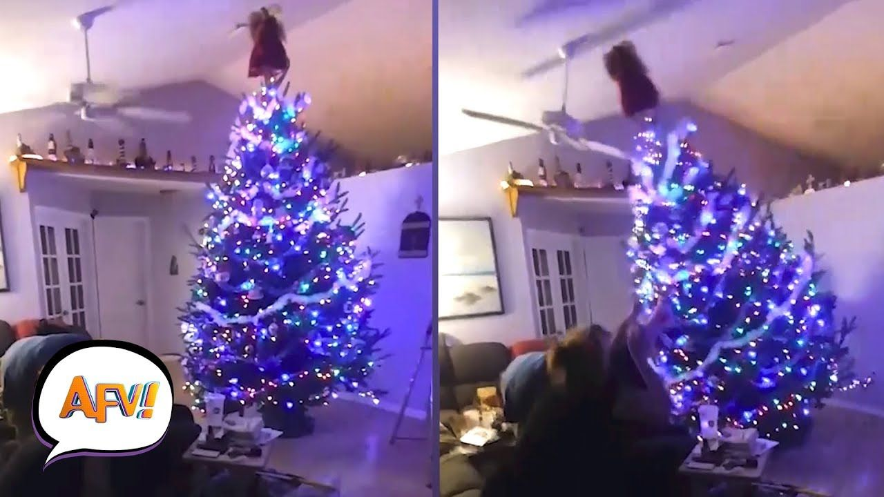 Funny And Cute Christmas Tree Fails Afv Funniest Fail Videos Funny Gifs Fails Cute Christmas Tree Funny Fails