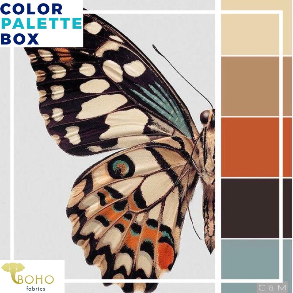 """Desert Butterfly"", Mystery Color Palette Box"