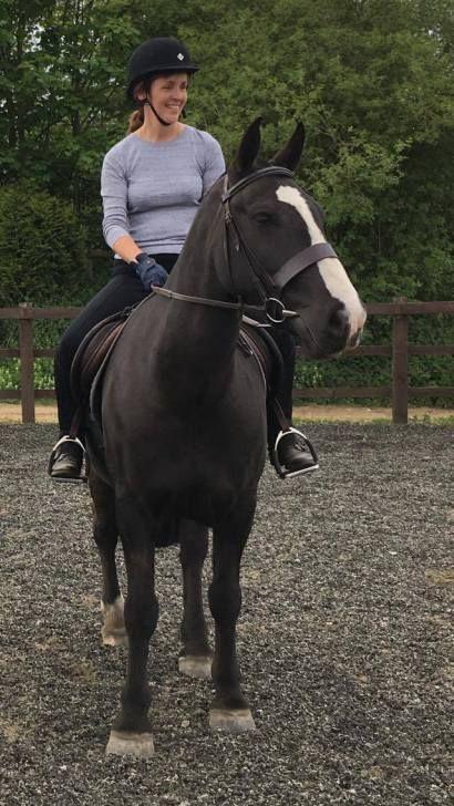 Aspire Equestrian Intensive Training Camp Spring 2017 Photo Report - training report