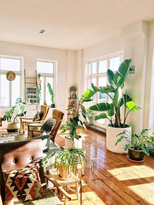 Pin vsco insta blakeissiah living room decor area also best decoration images future house bohemian homes nice houses rh pinterest