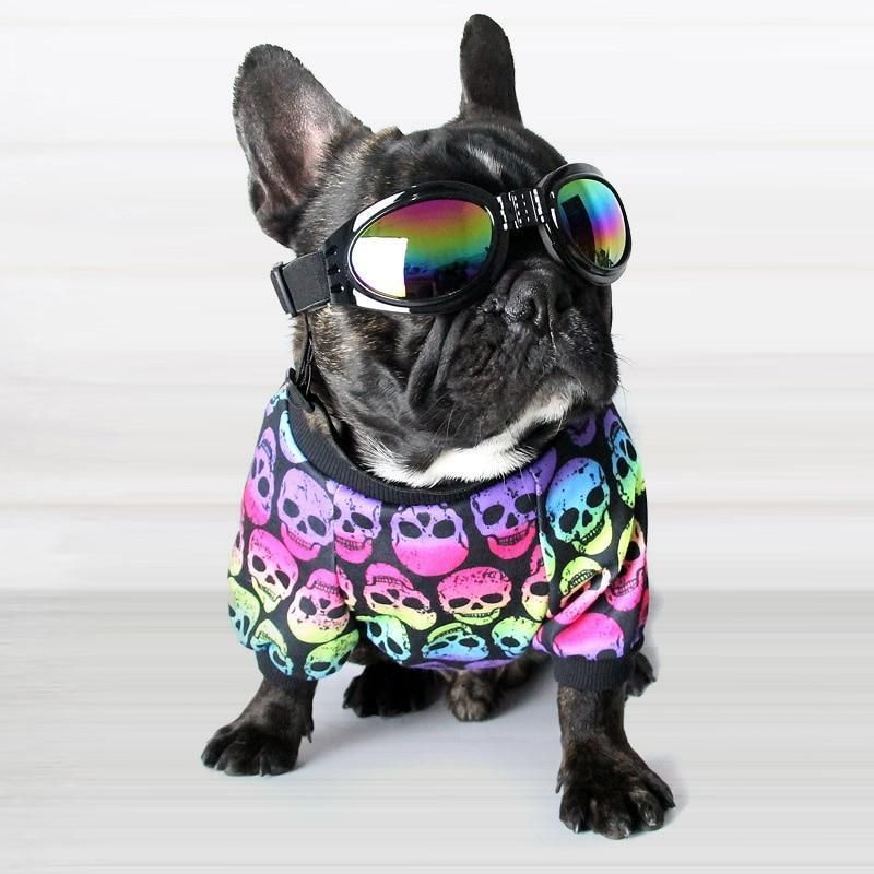 Pin On Frenchie Bull Dog Lover