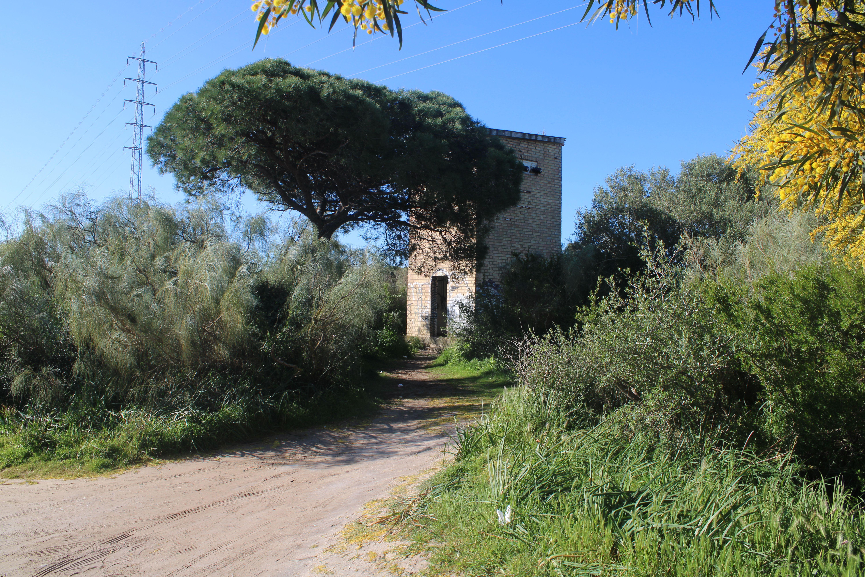 urbex, exploración de lugares abandonados en el puerto de santa maria