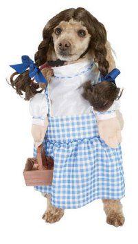 Amazon Com Wizard Of Oz Dorothy Dog Halloween Pet Costume Size