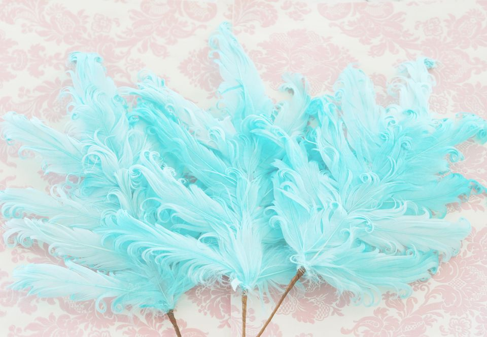 Turquoise feather decorations