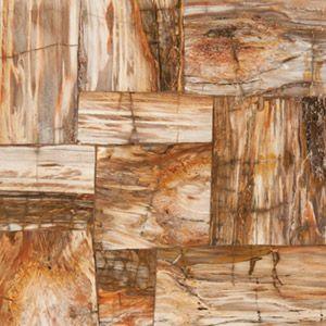 Best Tile Floor Manufacturer Features Petrified Wood Line 400 x 300
