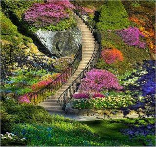 Fábrica de Idéias - Tudo em Paisagismo e Decoração: Escadarias Floridas