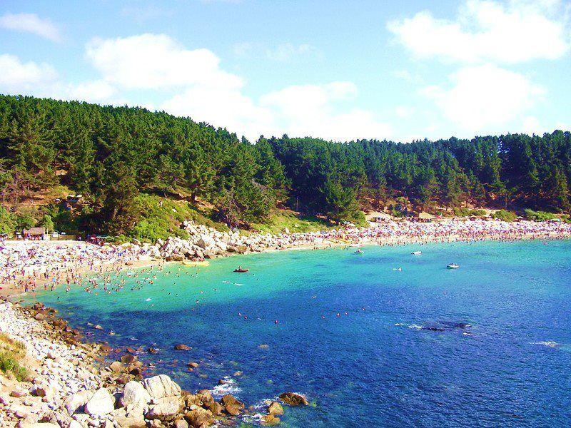 Playa El Canelo y Canelillo 038d571729b