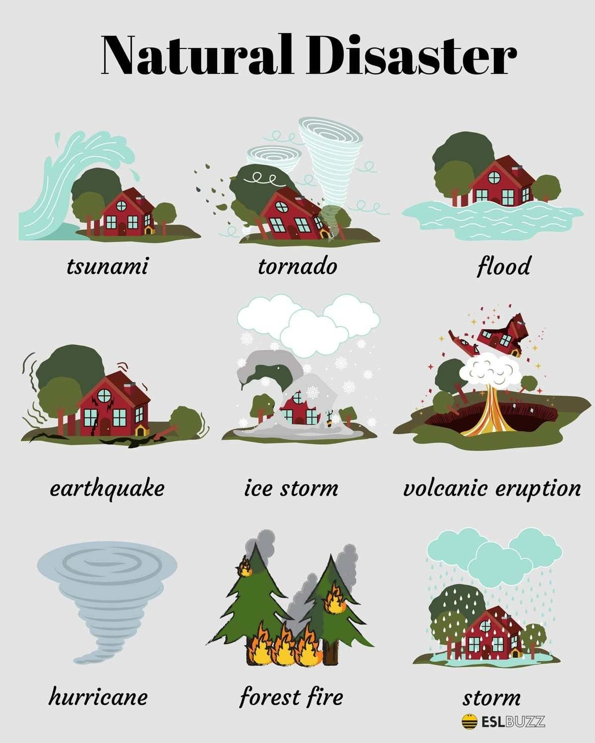 Natural Disaster Vocabulary
