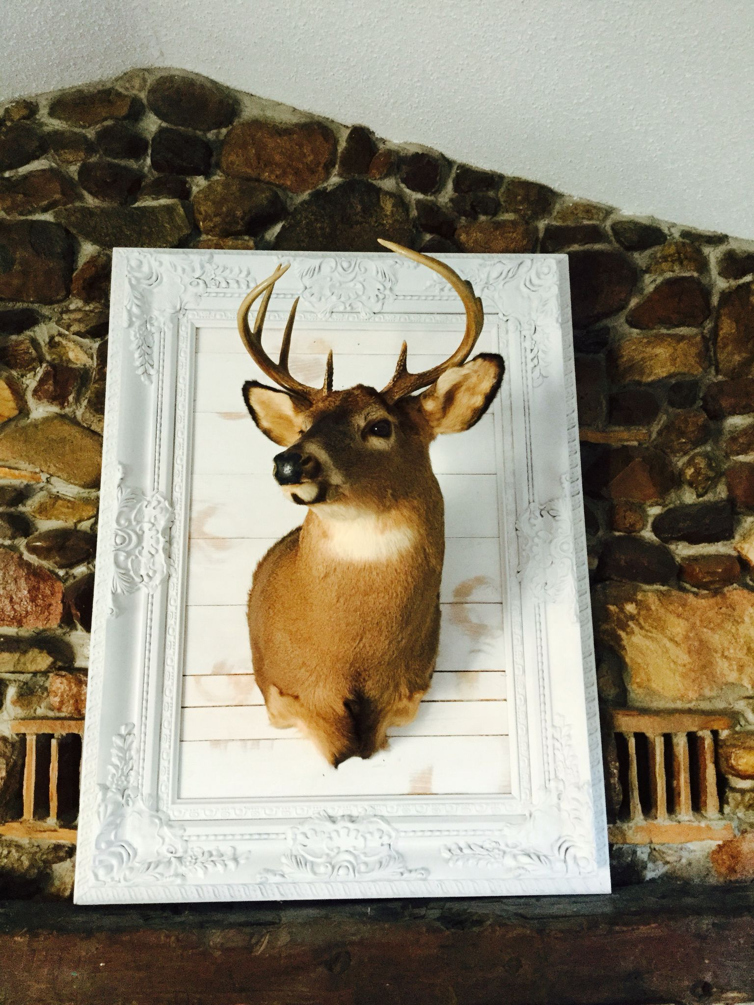 Repurposed Frame As A Deer Mount Head Decor
