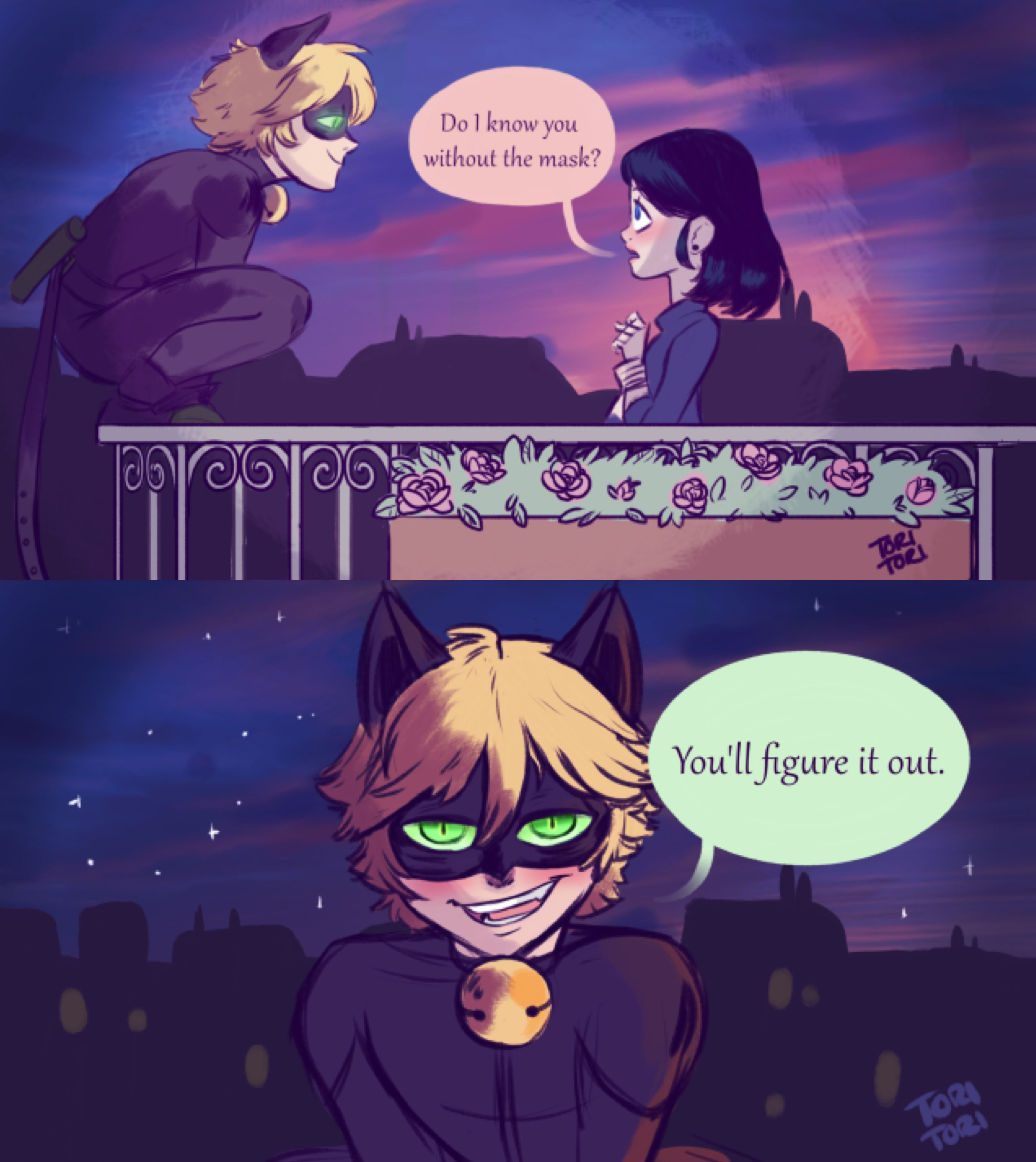 This Is How All The Marichat Cough Sin Cough Fanfics Starr Miraculous Ladybug Anime Miraculous Ladybug Memes Miraculous Ladybug Funny