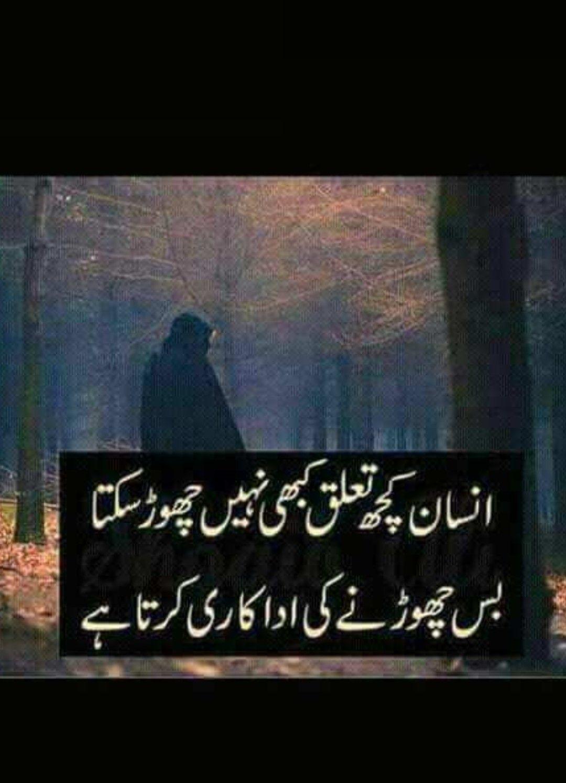 Funny Jokes Quotes In Urdu