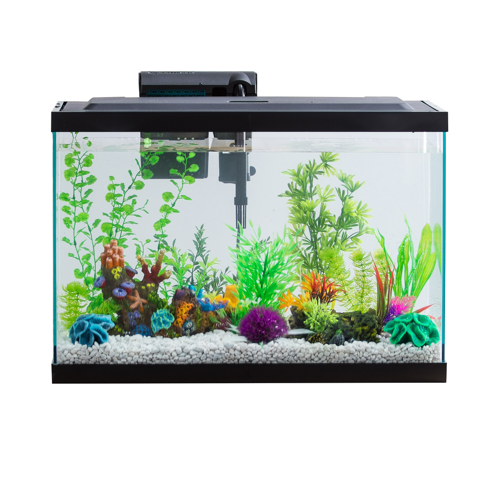 Pets With Images Fish Tank Lights 20 Gallon Aquarium 29 Gallon Aquarium