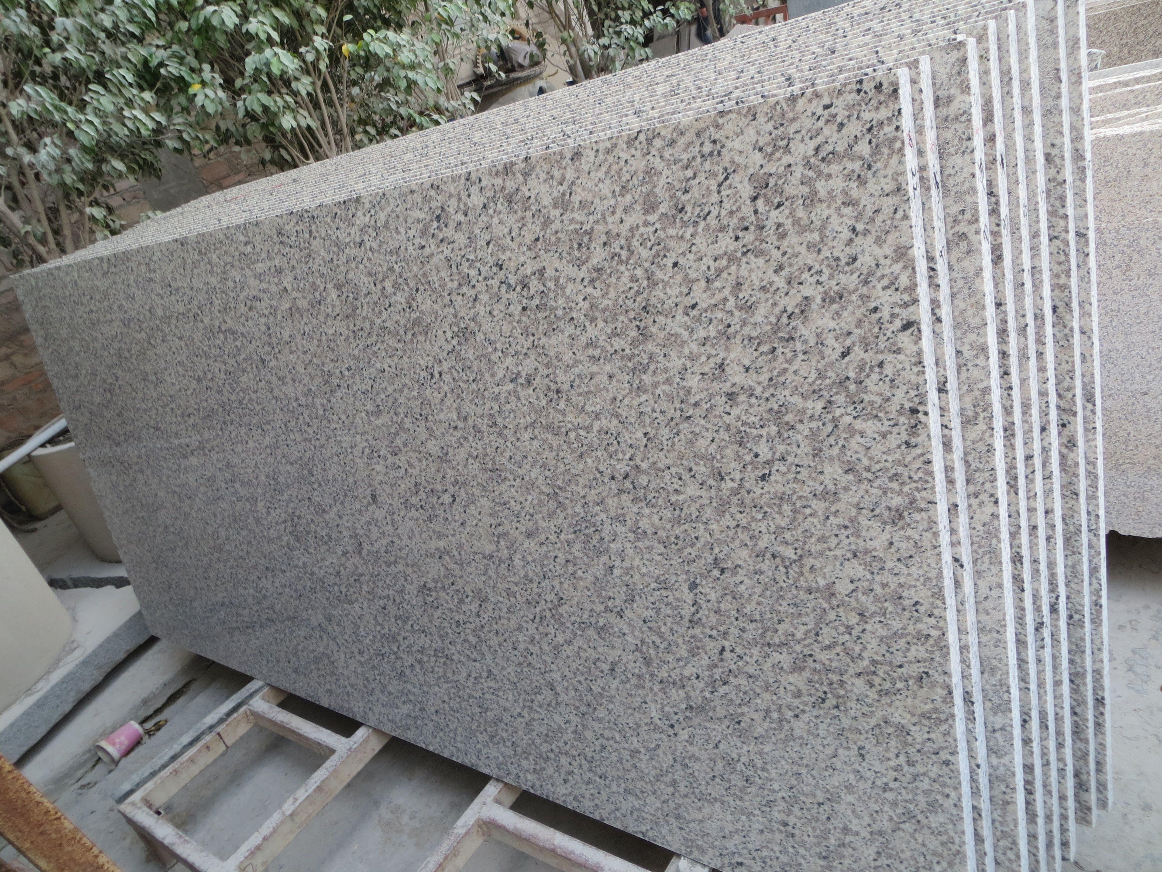 Newstar Supply Ng069 Tiger Skin White Granite Countertop China Factory Granite Countertop Q Granite Stone Countertops Countertop Inspiration Cement Countertops